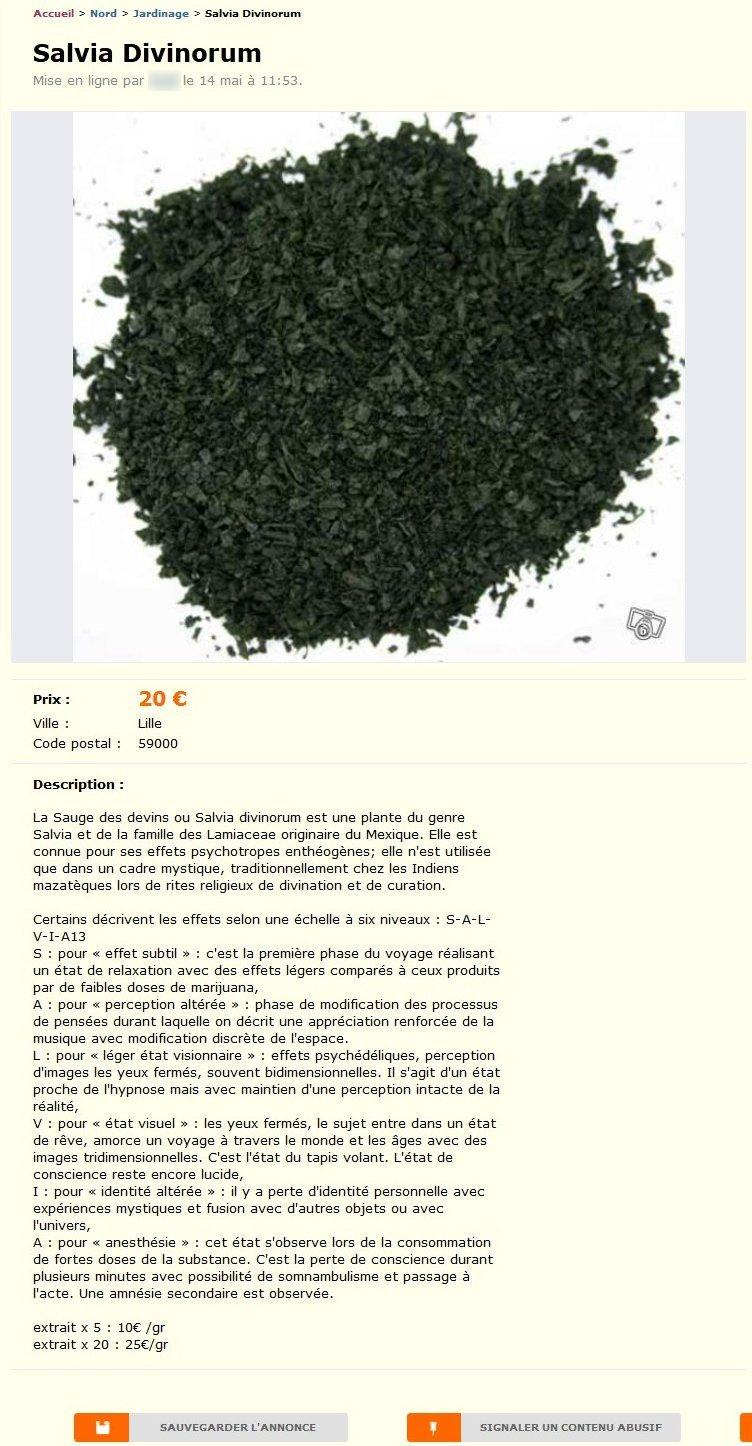 salvia divinorum jardinage nord pas de calais best of le bon coin. Black Bedroom Furniture Sets. Home Design Ideas