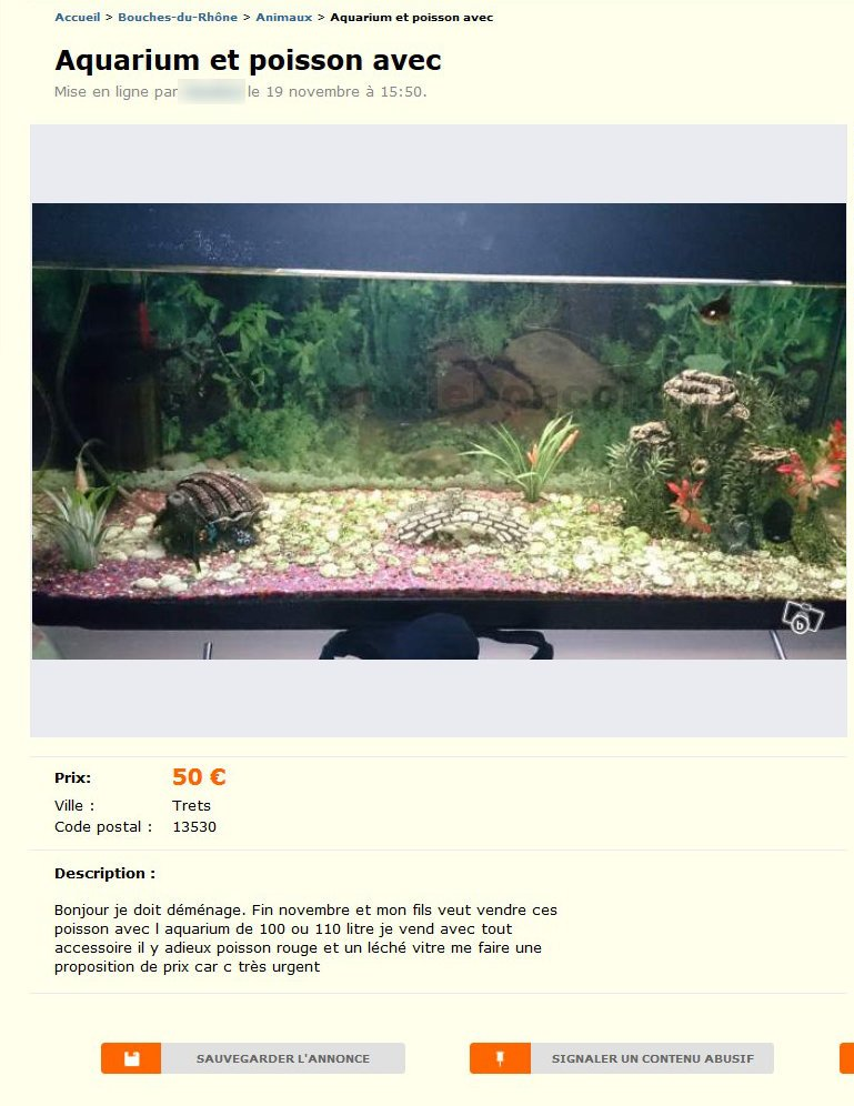 aquarium et poisson avec animaux provence alpes c te d. Black Bedroom Furniture Sets. Home Design Ideas