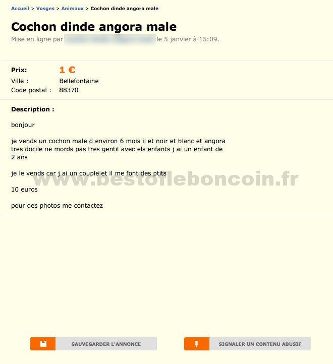 Cochon Dinde Angora Male Animaux Lorraine Best Of Le