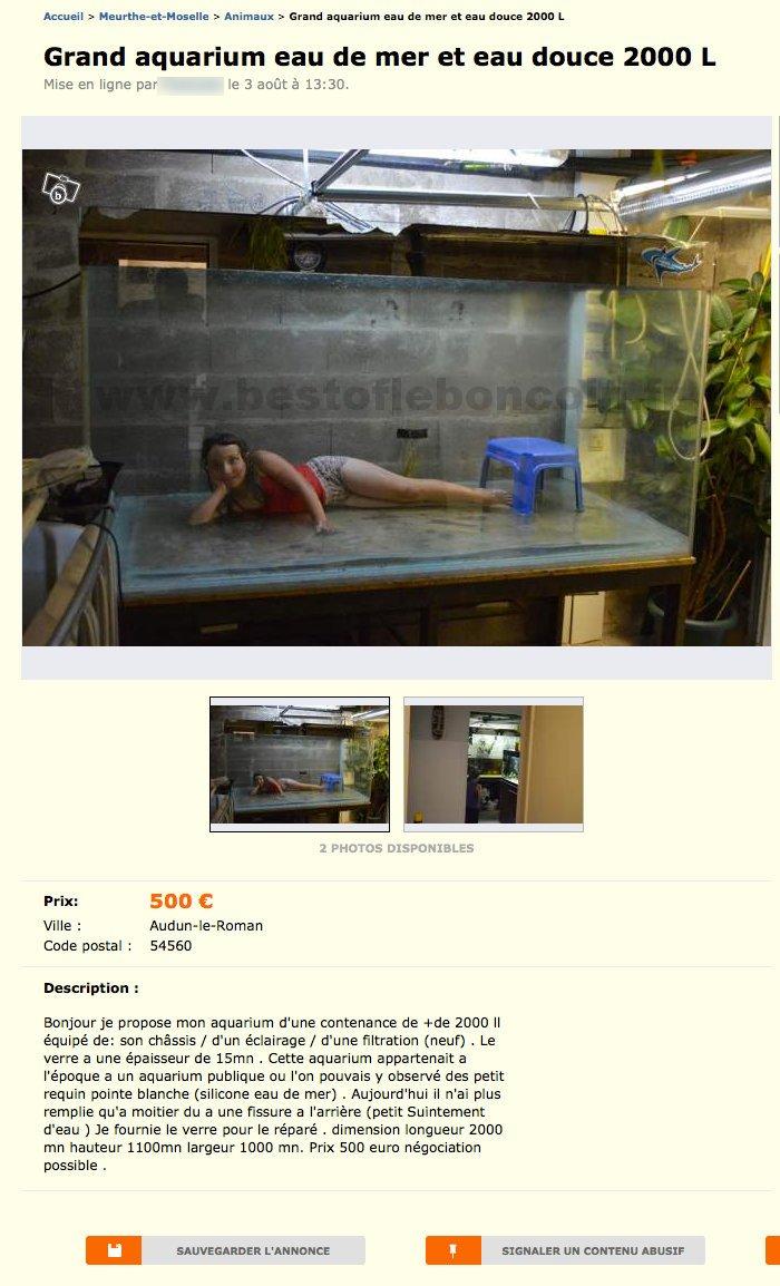 grand aquarium eau de mer et eau douce 2000l animaux lorraine best of le bon coin. Black Bedroom Furniture Sets. Home Design Ideas